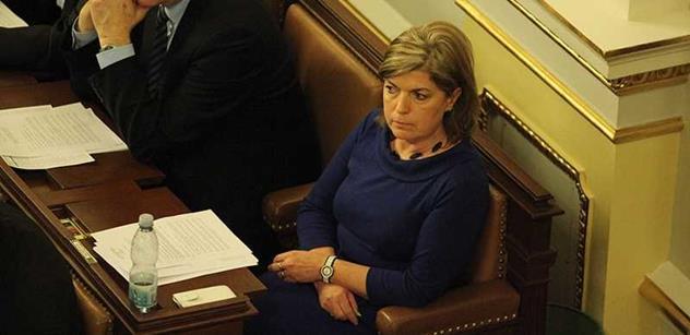 TISKOVÁ ZPRÁVA: Poslankyně Pastuchová se stala předsedkyní Stálé komise pro rodinu, rovné příležitosti a národnostní menšiny